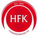 logo-hammersborg